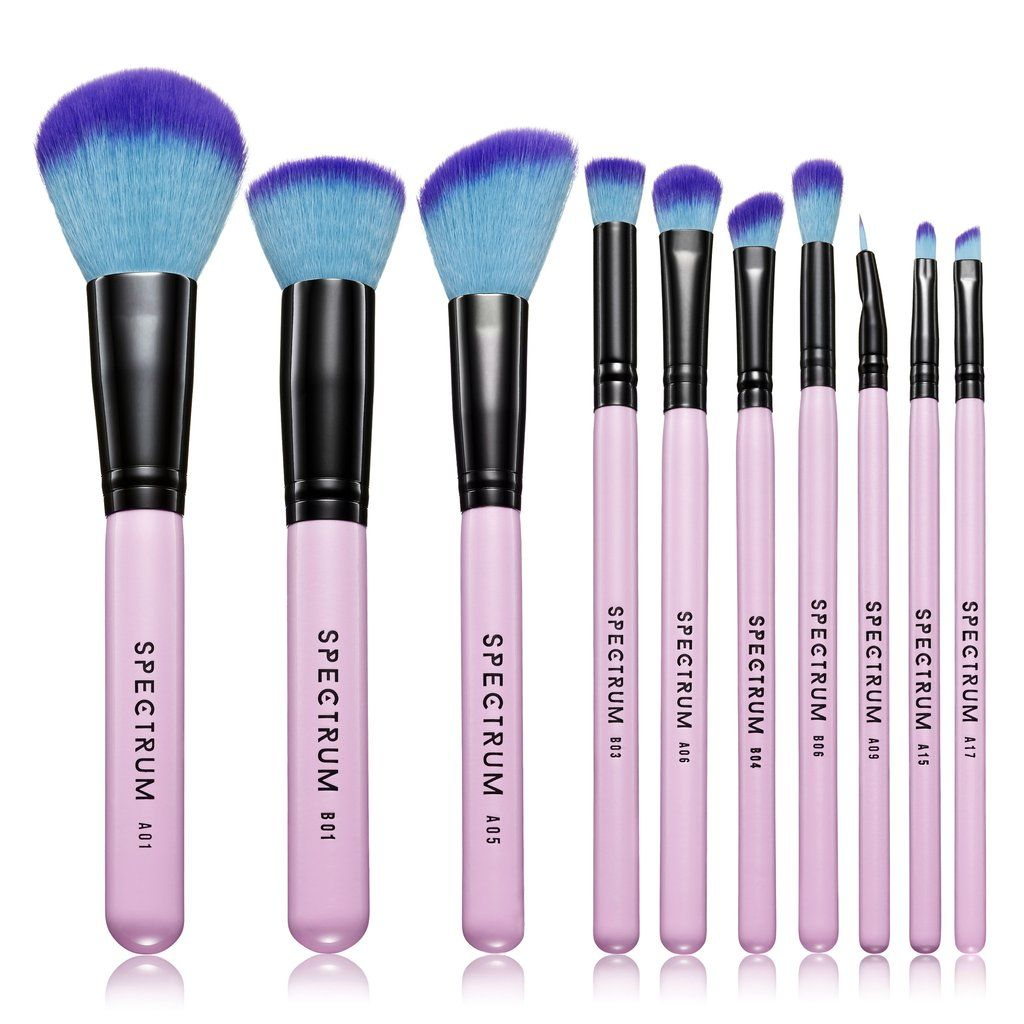 10 Piece Essential Set Makeup brush set, Complete makeup
