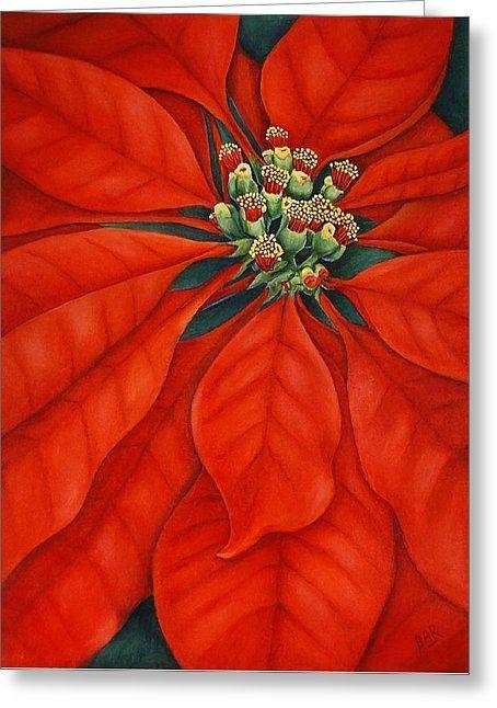Red Poinsettia Greeting Card by Barbara Ann Robertson