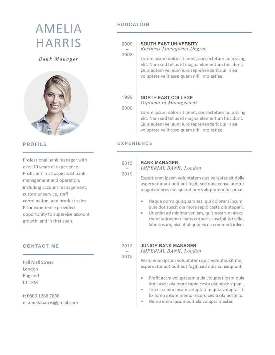 35+ Modern professional resume template Format