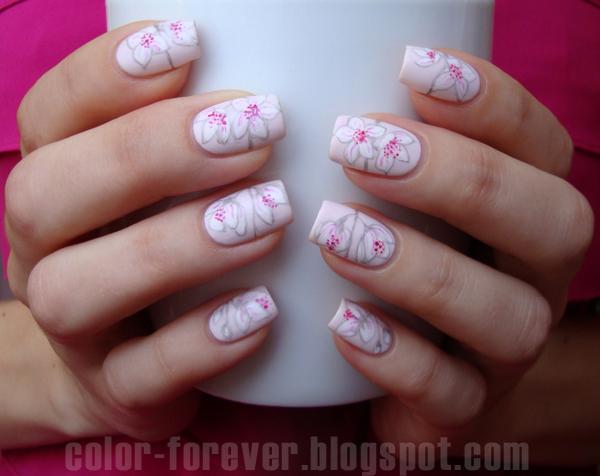 Color Forever Kwiat Wisni Projekt Kwiaty Tydzien 4 Cherry Blossom Flowers Cherry Blossom Blossom Flower