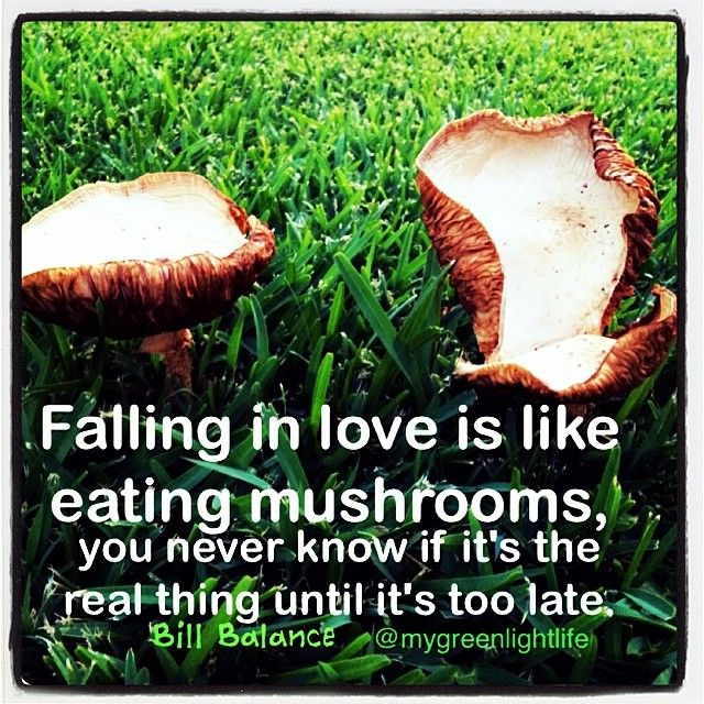 how to know when you are falling in love