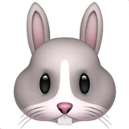 The Rabbit Face Emoji On Iemoji Com Emoji Rabbit Emoji Pictures