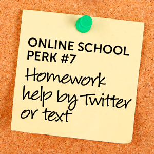 Why Back to School is Better Online The Virtual Voice