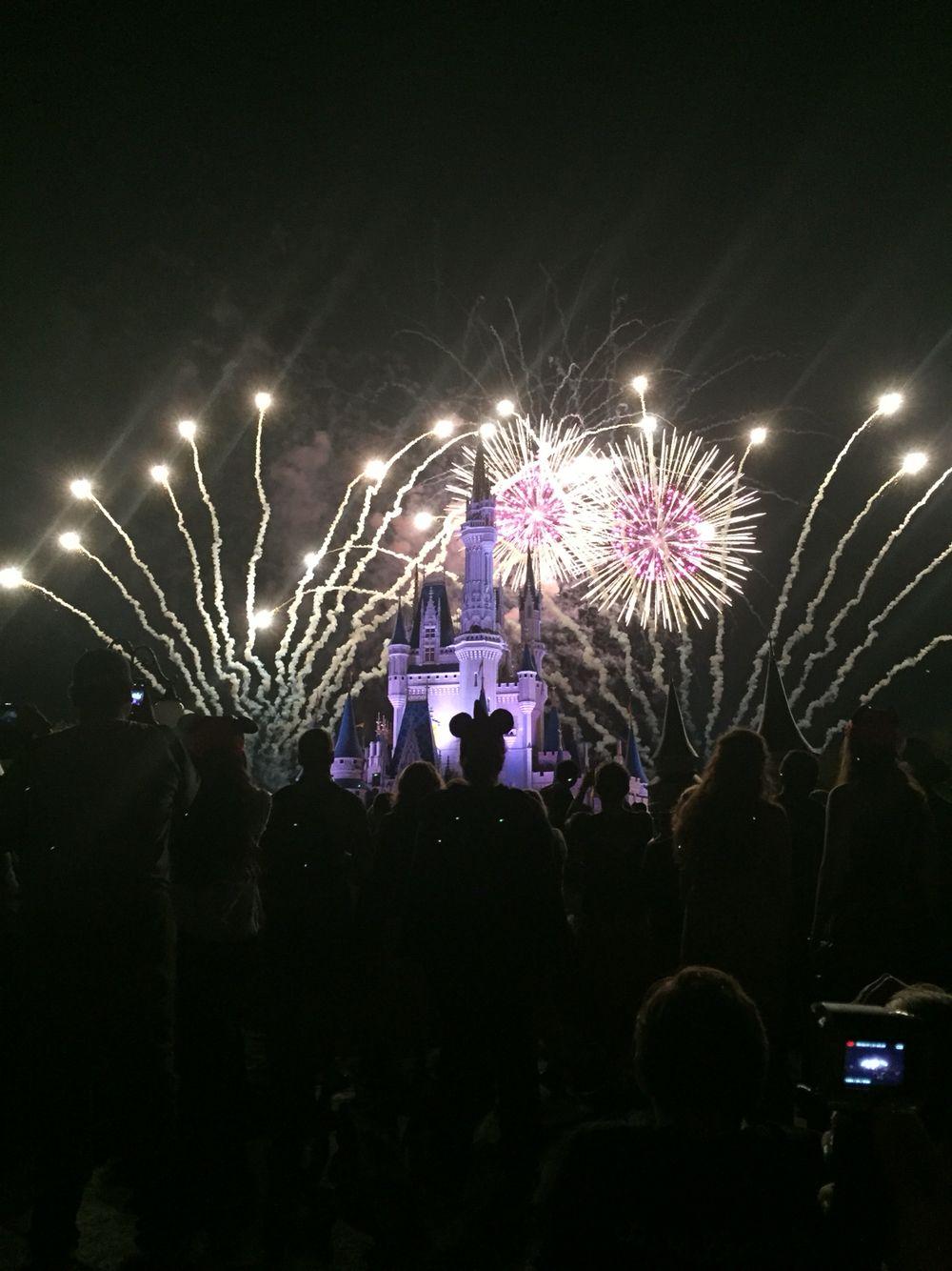 "Disney World ""wishes"" nighttime spectacular"