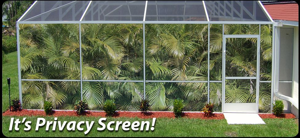 Pool Privacy Screen Ideas landscape around pool cage | dream pool | pinterest | dream pools