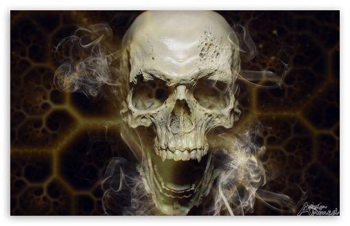 Pin von Linda Stewart auf Bones + Skulls Kunst, 4k uhd