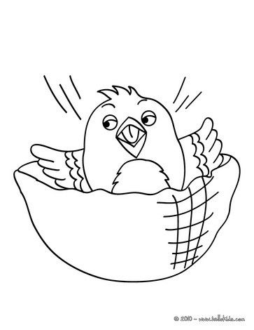 Baby Canary Coloring Sheets Nice Bird Coloring Sheet More