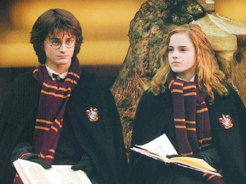 Harry Potter And Goblet Of Fire Harry Potter Goblet Harry Potter Pictures Harry Potter Hermione