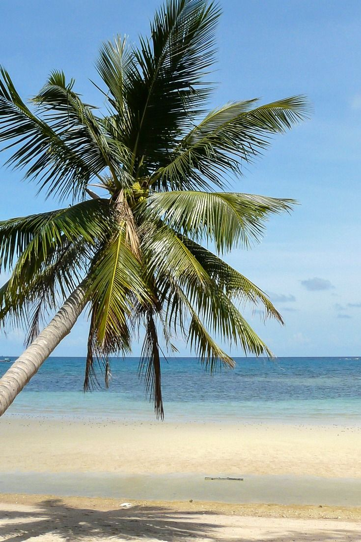 Strand auf Ko Tao, Thailand / Artikel in meinem Reiseblog: 10 Traumstrände zum Wegträumen