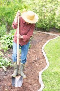 8e471aac8f5506124fc82ab713e01483 - How To Prepare Georgia Soil For Gardening
