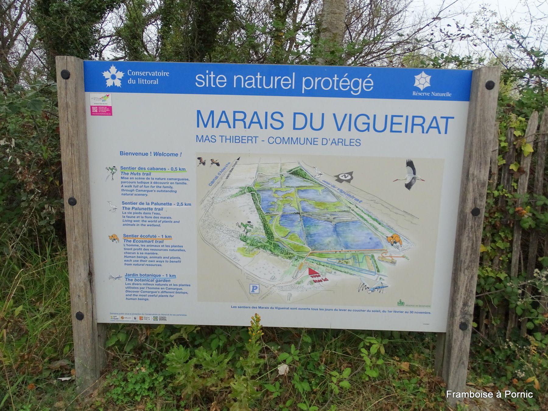 """Résultat de recherche d'images pour """"marais vigueirat pinterest"""""""