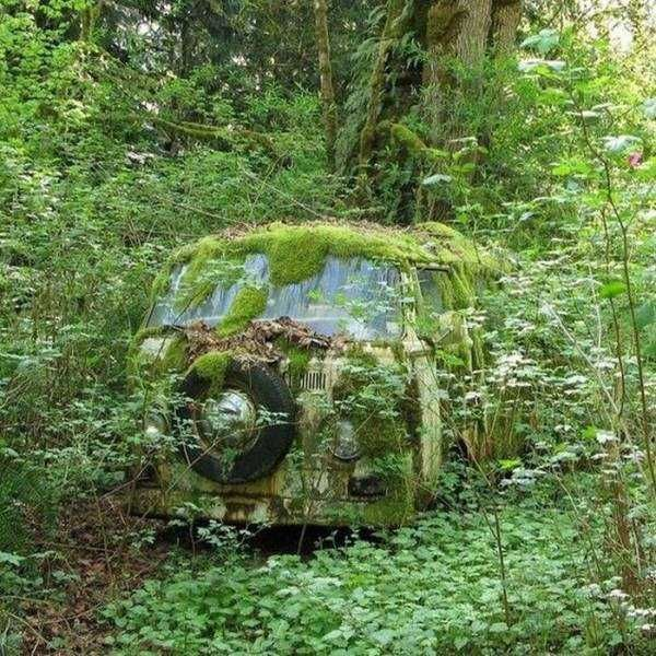 40 Hauntingly Beautiful Abandoned Places And Forgotten Things #abandonedplaces