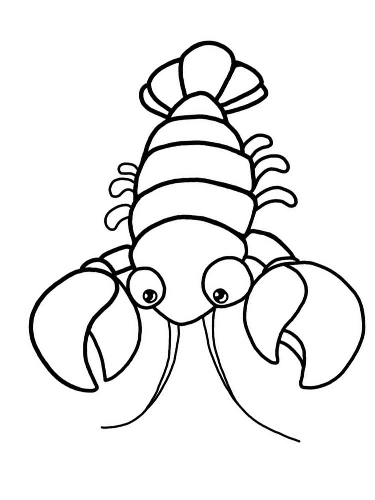 Lobster Coloring Pages Lobster Or Commonly Called Crayfish Or Barong Shrimp The Morphology Of Lobsters Animal Coloring Pages Coloring Pages Lobster Pictures