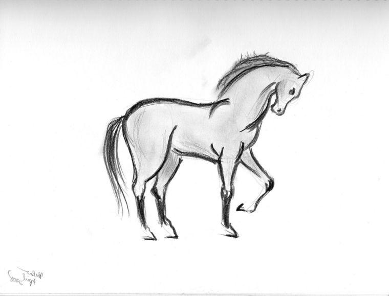 Cose Facili Da Disegnare Abbozzo Di Un Cavallo Disegnare Con La Matita Disegni A Matita Facili Disegni Disegni Di Cavalli