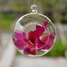 clear air plant hanging glass ball MH-KX0142
