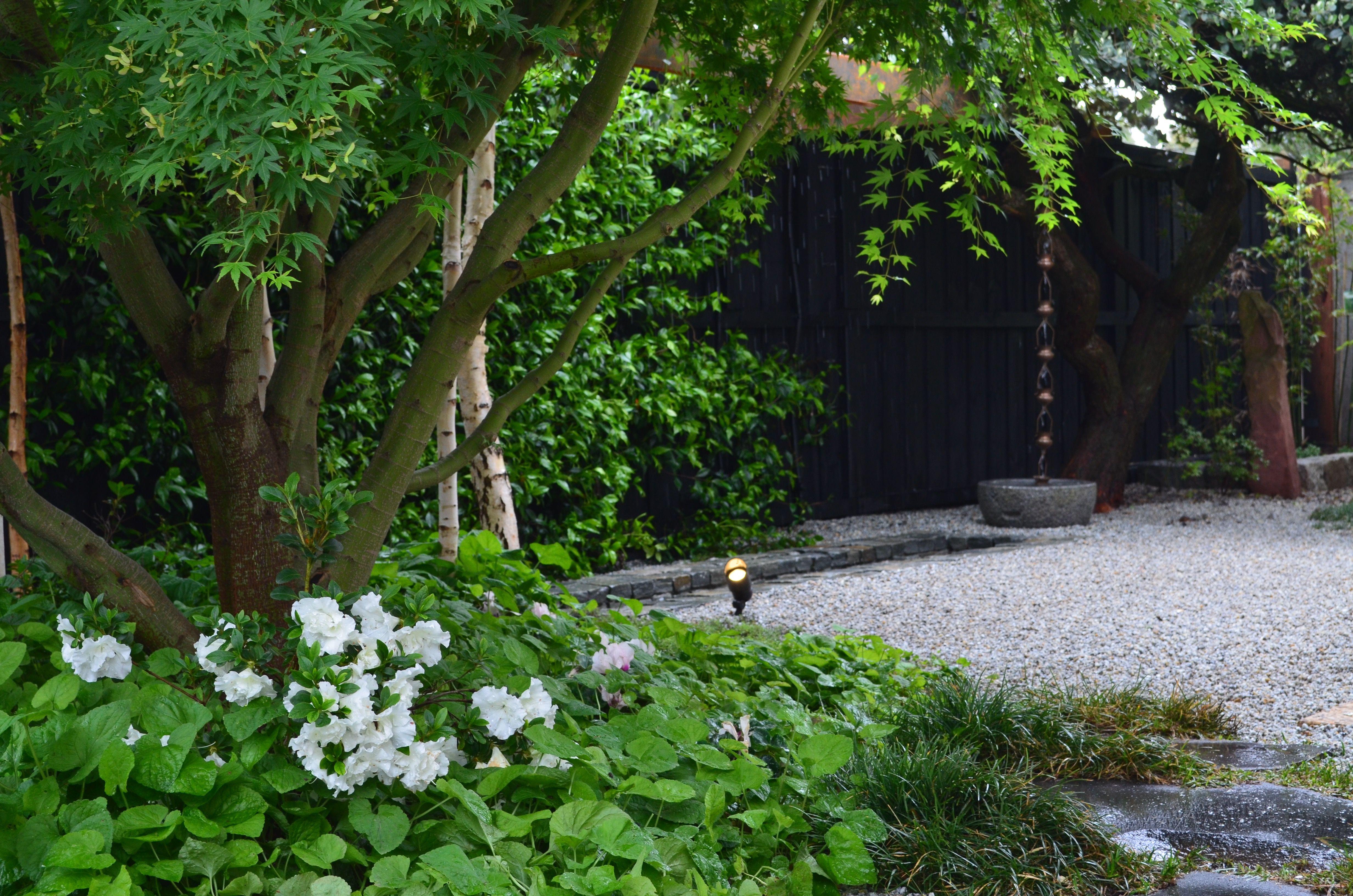 Japanese Garden Ballarat Small Garden Landscape Japanese Garden Small Garden