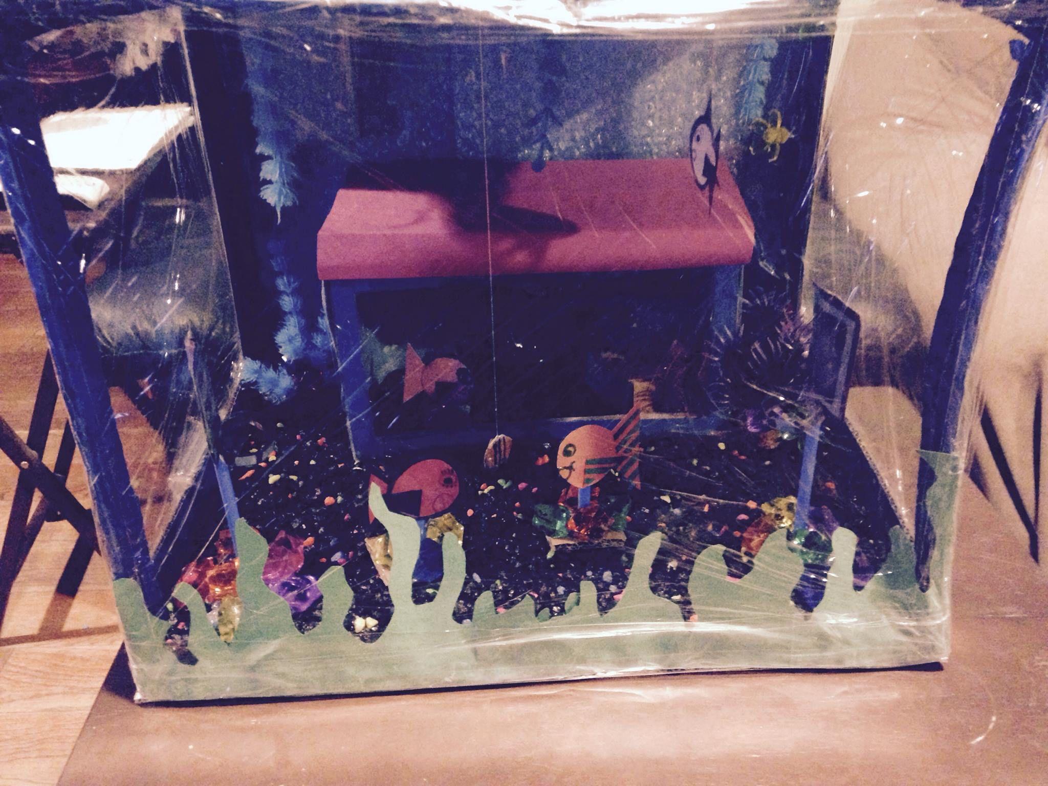 School Aquarium Math Project