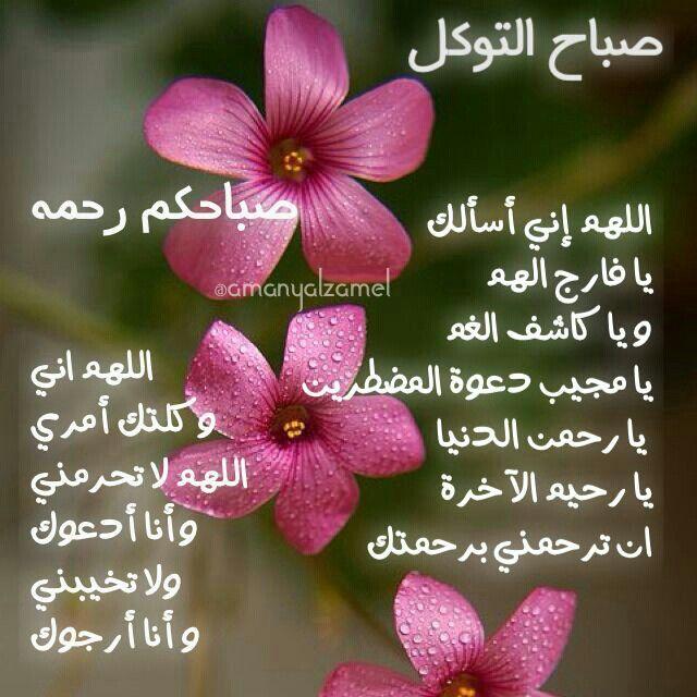 صباح التوكل Floral Floral Rings Messages