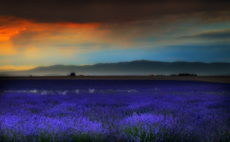 Summer storm in Provence. by Tramont_ana on 500px