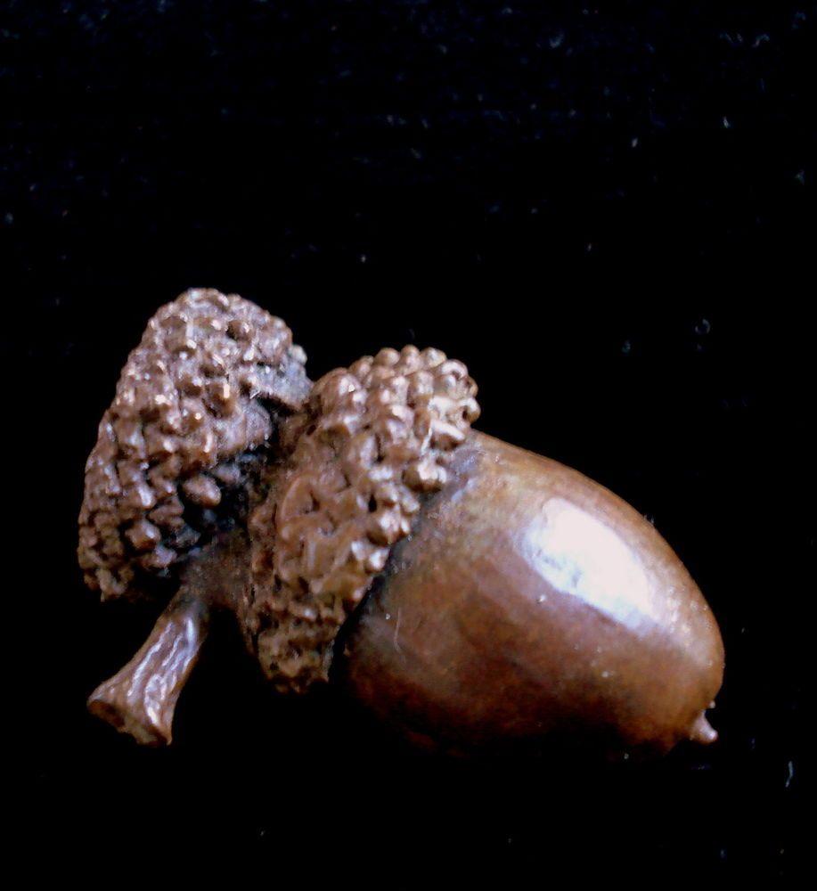 """Lost Wax Cast Bronze Oak Double capped  /""""Acorn/""""  Decorative Sculpture"""