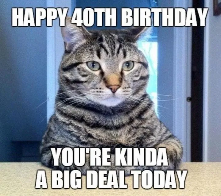 100+ Funny 40th Birthday Memes to Take the Dread Out of