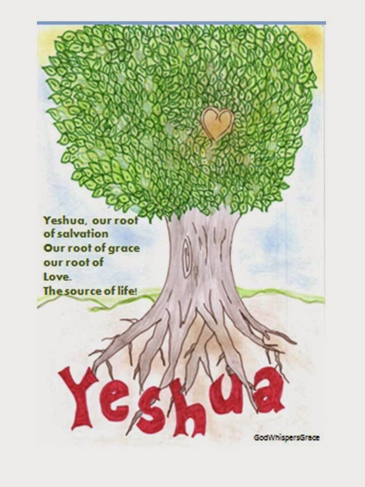 Everything begins and ends in Him. Yeshua You are the Alpha and Omega. We are connected to You forever. The Root (You Yeshua) supports the tree (little old me).  Your roots are so strong and mighty in our lives. May the fruits that are present in our lives be everything that You want it to be, so we can be more like You to love the way You love and have grace for others the way You had and still have grace for us.  You are the Source of our lives!