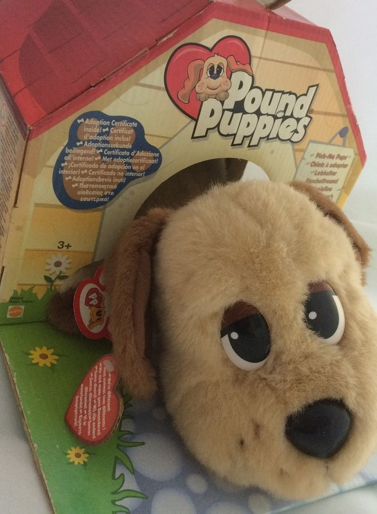 Pound Puppies Mattel Rare Boxed 2004 Pound Puppies Puppies And Kitties Puppies