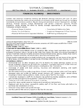 professional resume - Professional It Resume