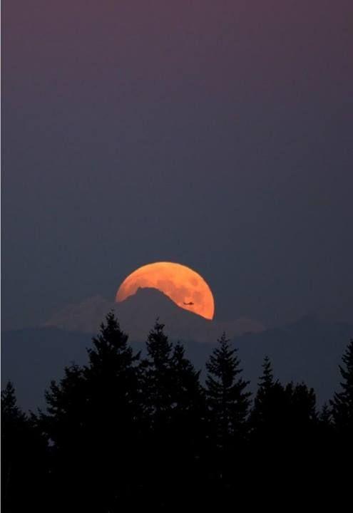 Glacier Peak Moon  Moonrise behind Glacier Peak, Washington.  Photo Credit : Rick Hawkinson