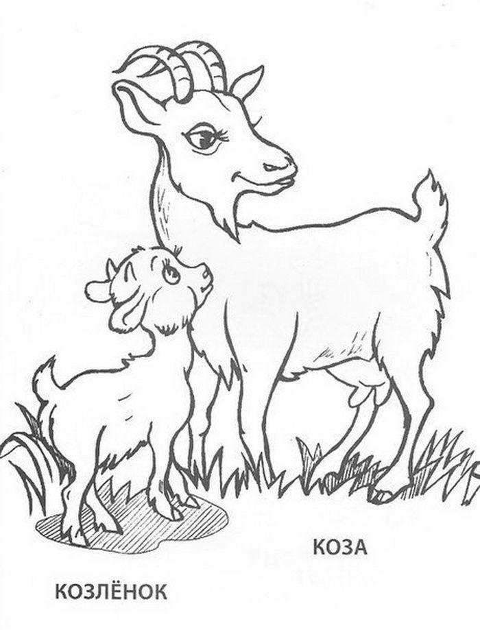 Koza a kozliatko | mladata | Pinterest | Ausmalbilder
