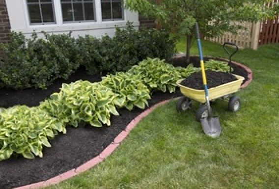 Landscaping Ideas For Back Yard Inexpensive Idea Outdoor Es
