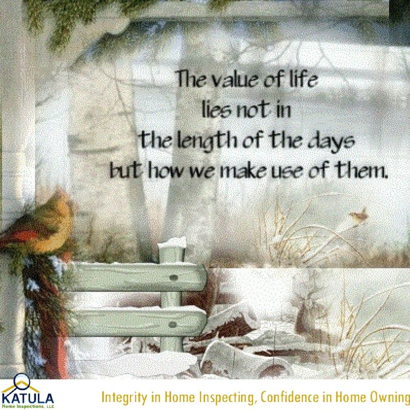 The Value Of Life Lies Not In The Length Of The Days But How We Make Enchanting Value Of Life Quotes