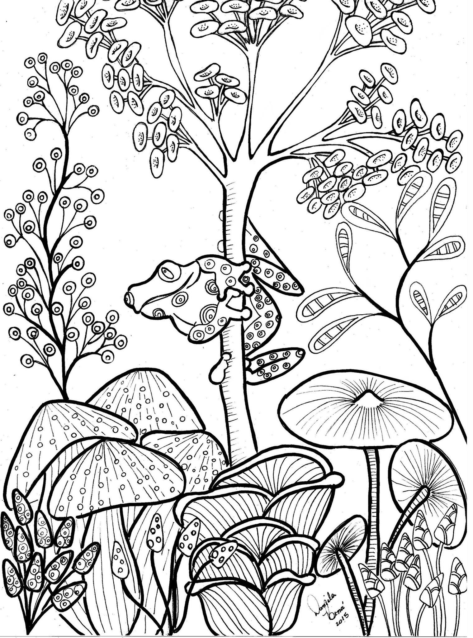 Free coloring pages red eyed tree frog - Cute Tree Frog And Mushrooms Coloring Page