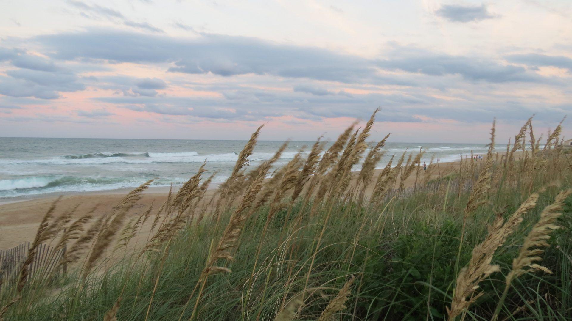 Wpnature Com Outerbanks Sea Oats Sunrise Ocean Water Sand Beach