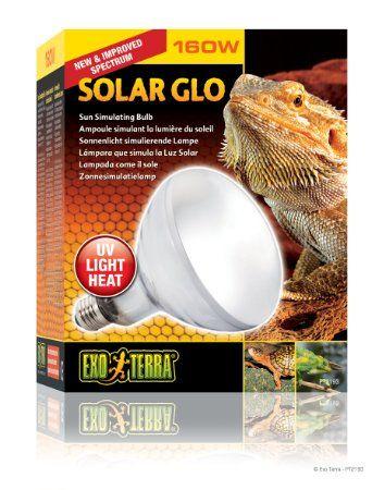 Exo Terra Solar Glo High Intensity Self Ballasted Uv Heat Mercury Vapor Lamp 160 Watt 32 35 Wit Amazon Prime Solar Exo Reptiles