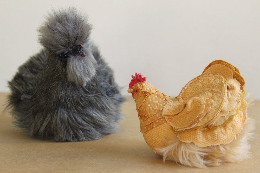 Fabric & Feathers — Pet Chicken Ranch