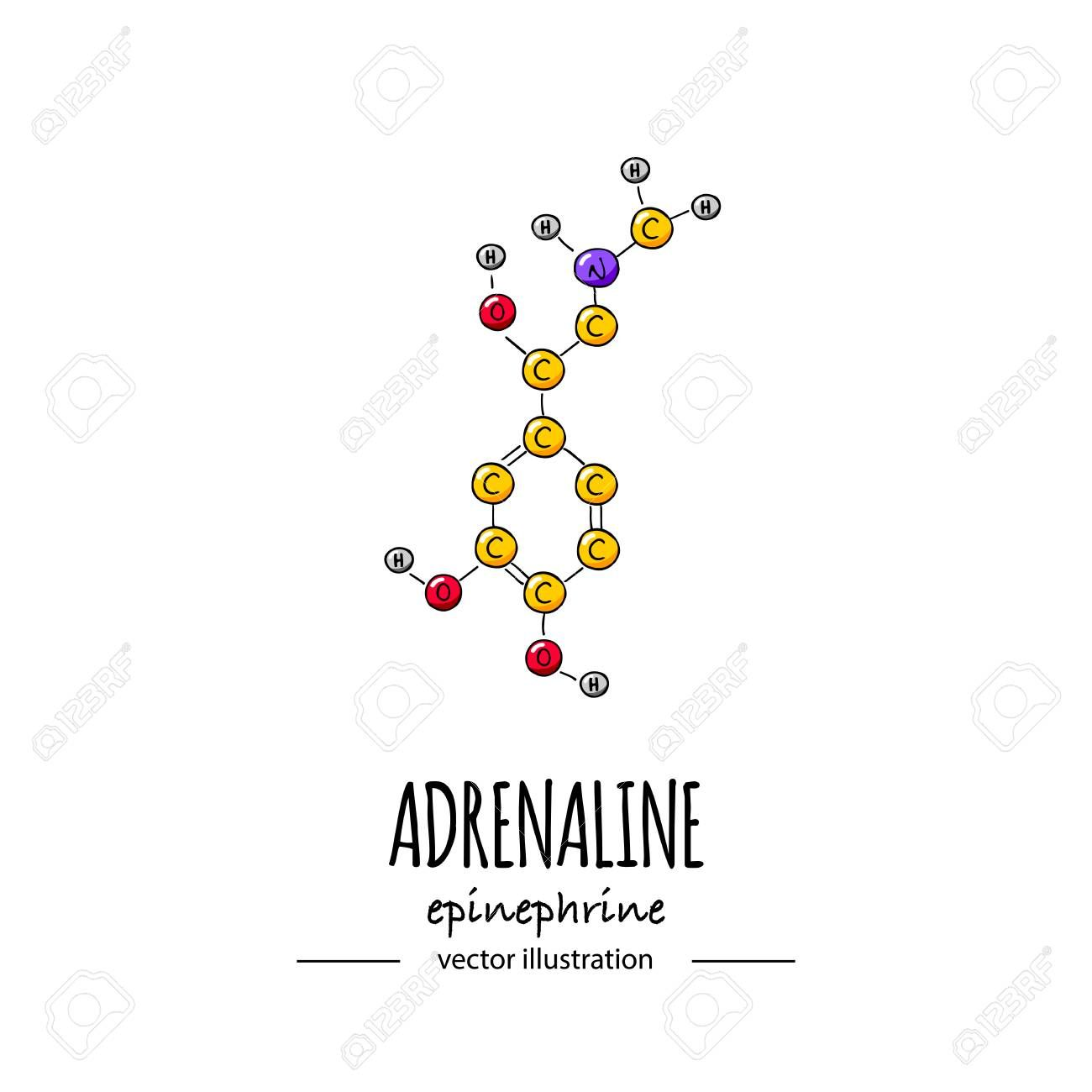 Hand Drawn Doodle Adrenaline Chemical Formula Icon Vector
