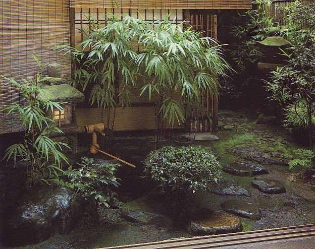 Small Japanese Design And Garden Plants, Rock Garden Design Ideas