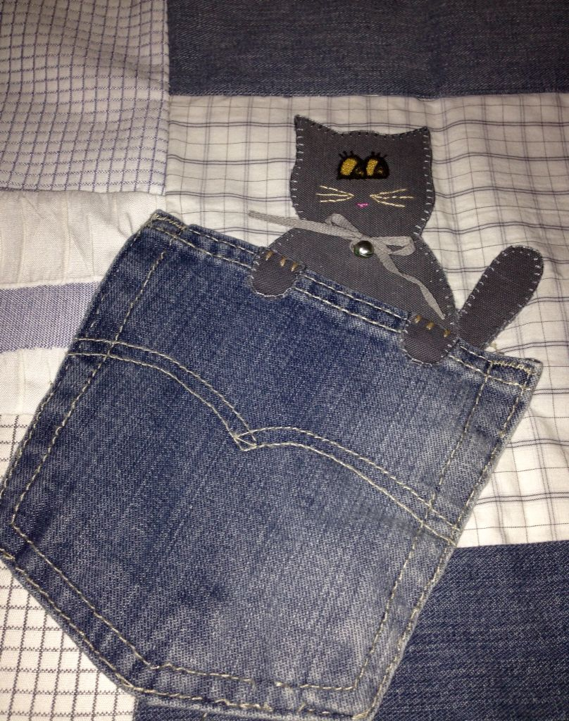 Gato de bolsillo