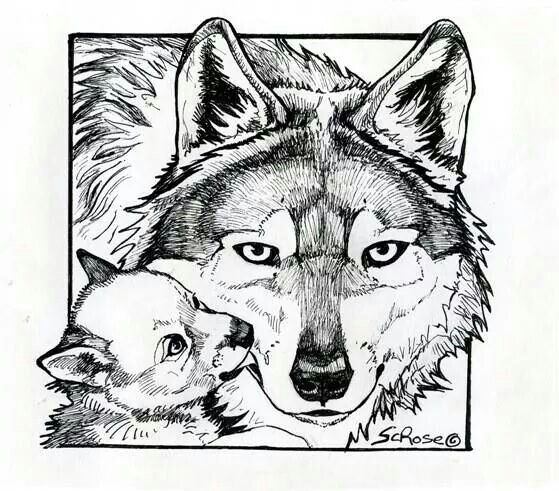 Mom And Baby Wolf Colors Adult Coloring Animals Horse Coloring