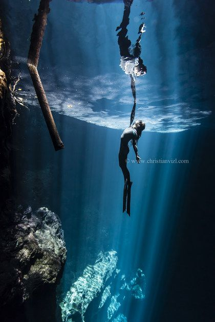 Photographs From Mexican Underwater Photographer Christian