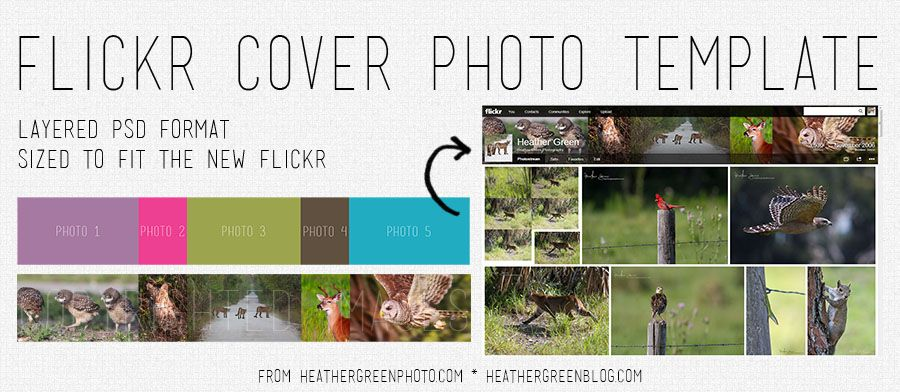 free download: flickr cover photo template | FREE Photoshop Stuff ...