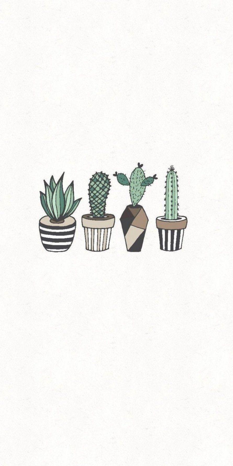 Pin By Bar Chaprac On My Pretty Nice Board Minimalist Wallpaper Cactus Drawing Plant Wallpaper