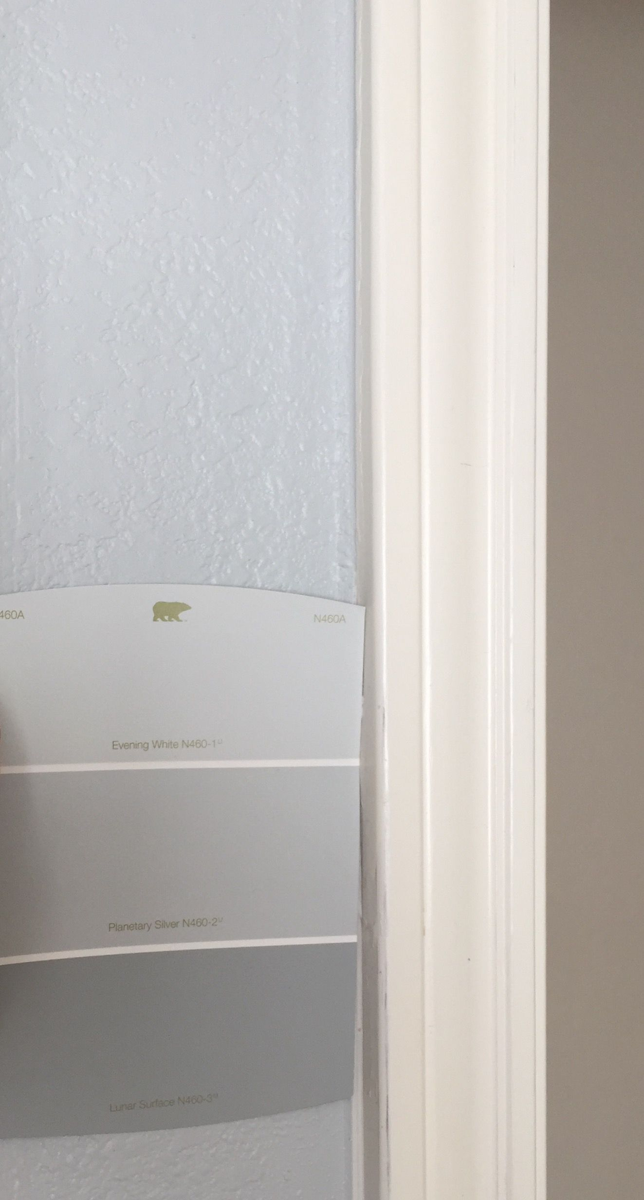 Behr Porch And Patio Paint Quart: BEHR Premium 1 Gal P5301 Loyal Gloss InteriorExterior Porch