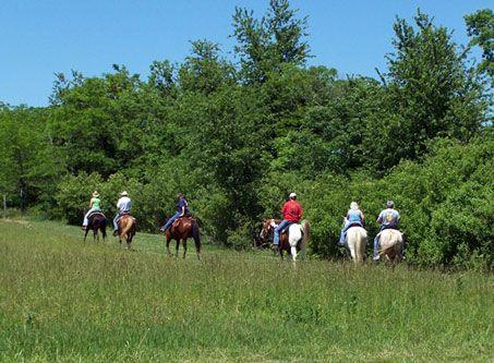 Image: Horseback Riders