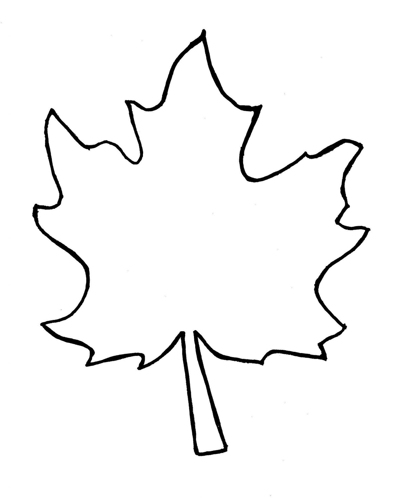 Large Leaf Template in 2020 | Leaf template, Leaf template ...