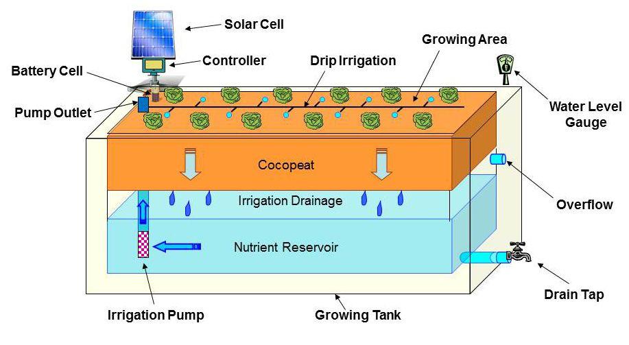 hydroponics diagram hydroponics Pinterest Hydroponics and Gardens - fresh blueprint sistem informasi adalah