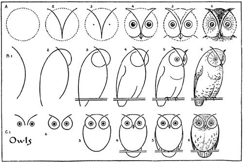 Draw An Owl Owls Drawing Drawings Drawing Tutorial