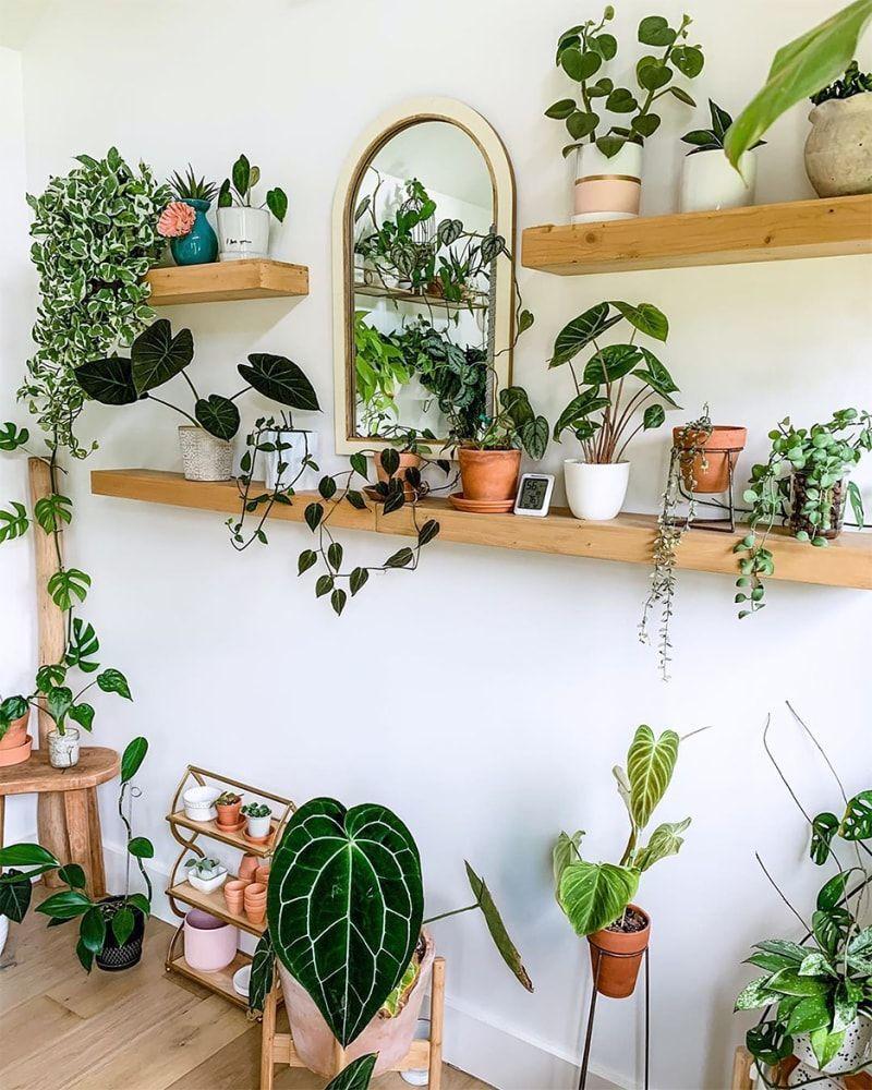 32 Ways to Arrange Your Perfect Indoor Plant Shelf   Plant decor ...