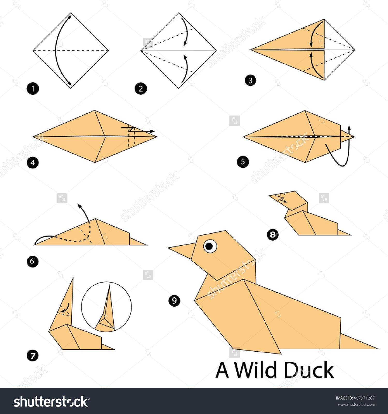 Step by step instructions how to make origami a wild duck stock step by step instructions how to make origami a wild duck stock vektorkp 407071267 jeuxipadfo Choice Image